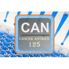 Cancer Antigen ELISA - CA 125