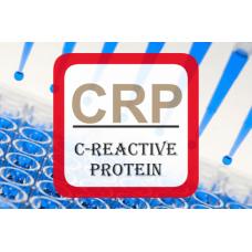 C-Reactive Protein ELISA - High Sensitivity CRP