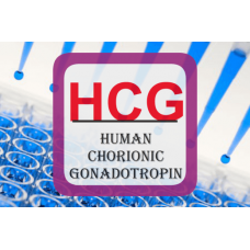 Human Chorionic Gonadotropin ELISA - Visual HCG pregnancy EIA