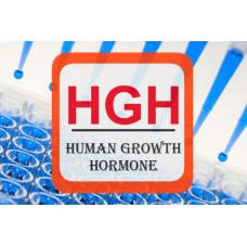 Human Growth Hormone ELISA - HGH