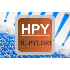 H. Pylori ELISA - IgG, Qualitative