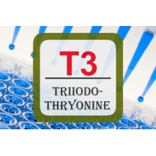 Thyroid Hormone ELISA - T3