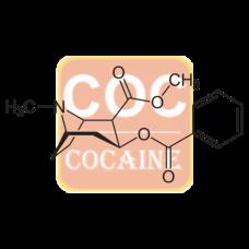Benzoyl Ecgonine Conjugate (BgG)