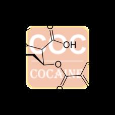 Benzoyl Ecgonine Antibody (pAb) - Sheep