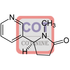 Cotinine-3 Antibody (pAb) - Rabbit