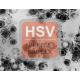 Herpes Simplex Virus (1, 2) Antibody (mAb) - Mouse