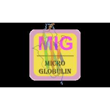 Microglobulin (Beta-2) Antibody (mAb) - Mouse