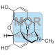 Morphine Conjugate (sAv)