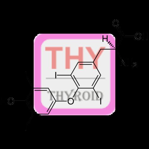 Thyroxine T4 Antibody Pab Sheep Thy P S02 United Immunoassay