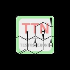3-Testosterone Conjugate (BgG)