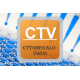 Cytomegalovirus ELISA - CMV IgG