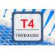 Thyroid Hormone ELISA - Free T4