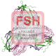 Follicle Stimulating Hormone (Alpha)  Antibody (pAb) - Goat