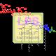 Lipopolysaccharide Antibody (pAb) - Rabbit